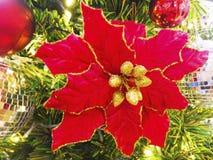 La flor de la Navidad se adorna en el árbol de navidad Fotos de archivo