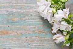 La flor del Alstroemeria llamó comúnmente el lirio peruano o el lirio de Fotografía de archivo