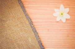 la flor del nemorosa de la anémona en un pastel teñió el backg de madera y de la arpillera Imagen de archivo