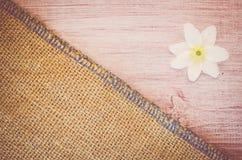 la flor del nemorosa de la anémona en un pastel teñió el backg de madera y de la arpillera Foto de archivo