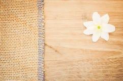 la flor del nemorosa de la anémona en un pastel teñió el backg de madera y de la arpillera Fotografía de archivo