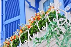 La flor en el balcón Imagenes de archivo