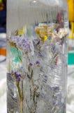La flor en hielo Fotos de archivo