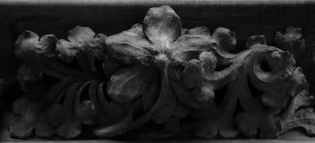 La flor ocultada Fotografía de archivo libre de regalías