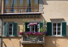 La flor pintoresca adornó el balcón en la ciudad medieval Lucca en Italia Imagen de archivo libre de regalías