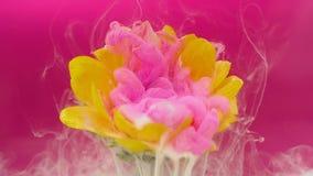 La flor y la tinta rosada se nublan la infusión en el agua metrajes