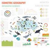 La flora isometrica e la fauna di 3d Antartide tracciano gli elementi Animali, b illustrazione di stock