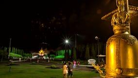 La flora reale del fuoco d'artificio di lasso di tempo zumma stock footage