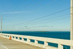 La Florida afina la carretera costera Imagenes de archivo