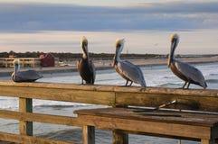La Florida - St. Augustine Imagenes de archivo