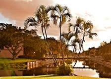La Floride après lever de soleil image stock