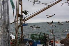 La flota pesquera está adentro Imagenes de archivo