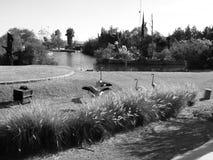La flotación es Foto de archivo