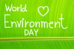 La foglia della banana strutturata, scrive la Giornata mondiale dell'ambiente Fotografie Stock Libere da Diritti