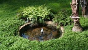 La fontaine à l'intérieur de l'art déco élèvent la maison photos libres de droits