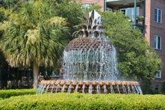 La fontaine d'ananas Photographie stock libre de droits