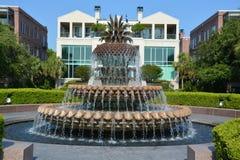 La fontaine d'ananas Photographie stock
