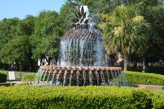 La fontaine d'ananas, Photographie stock libre de droits