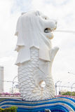 La fontaine de Merlion à Singapour Photo stock