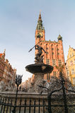 La fontaine de Neptune et l'hôtel de ville à Danzig Photos libres de droits