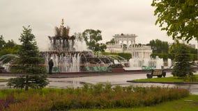La fontana al VDNKh a Mosca stock footage