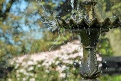 La fontana della cascata spruzza Fotografia Stock