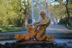 La fontana di Peterhof, San Pietroburgo Immagine Stock Libera da Diritti