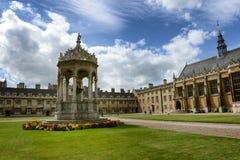 La fontana, grande corte, Trinity College Immagine Stock Libera da Diritti