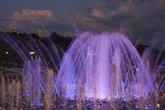 La fontana in Tsaritsyno Fotografia Stock Libera da Diritti