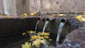 La fonte dei tre getti lava delicatamente le foglie dorate cadute video d archivio