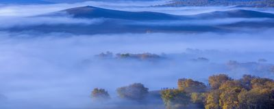 La forêt d'automne est épaisse en brume images stock