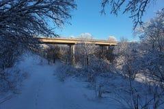 La forêt d'hiver avec la neige et le pont images stock