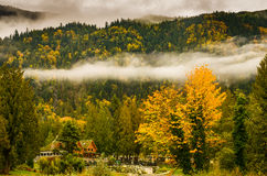 La forêt dans le voile nuptiale tombe parc provincial, Canada Image libre de droits