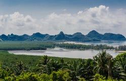 La forêt de côte et de palétuvier Images libres de droits