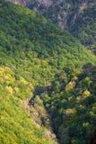 La forêt de Fragas font Eume Images stock
