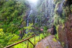 La forêt de laurier, les fontes de Lewada DAS 25 et le Lewada font Risco, île de la Madère, Portugal Images libres de droits