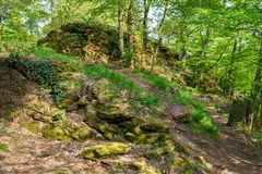 La forêt du Palatinat au printemps l'allemagne Image stock