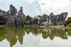 La forêt en pierre Images stock