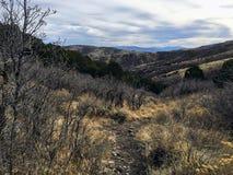 La forêt en retard de panorama d'automne regarde la hausse, faisant du vélo, traîne à cheval par des arbres sur la fourchette et  images stock