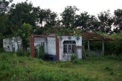 La forêt habitée par maison abandonnée se produit l'opacité placentaire photo stock