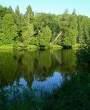 La forêt s'est reflétée dans le lac image stock