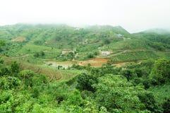 La forêt tropicale de hautes montagnes avec des nuages passant dans l'Inde Images stock