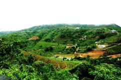 La forêt tropicale de hautes montagnes avec des nuages passant dans l'Inde image stock