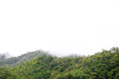 La foresta alla parte anteriore delle montagne nella nebbia e la menzogne bassa si appannano; Diga Kanchanaburi Tailandia di Srin Immagini Stock Libere da Diritti