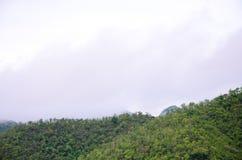 La foresta alla parte anteriore delle montagne nella nebbia e la menzogne bassa si appannano; Diga Kanchanaburi Tailandia di Srin Immagini Stock