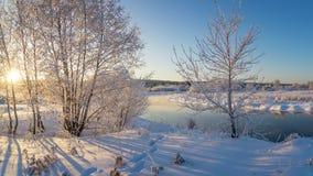 La foresta dell'inverno di Snowy con i cespugli e gli alberi sulla corrente contano, la Russia, i Urals Fotografie Stock