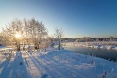 La foresta dell'inverno di Snowy con i cespugli e gli alberi sulla corrente contano, la Russia, i Urals Immagini Stock Libere da Diritti