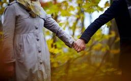 la foresta delle coppie passa l'amore della holding Immagine Stock Libera da Diritti