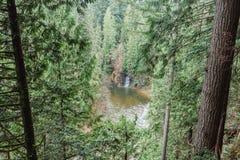 La foresta densa circonda un lago e una cascata Fotografia Stock