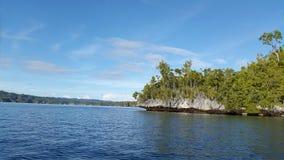 La foresta di corallo di verde della roccia della tonalità luminosa del cielo blu Fotografia Stock